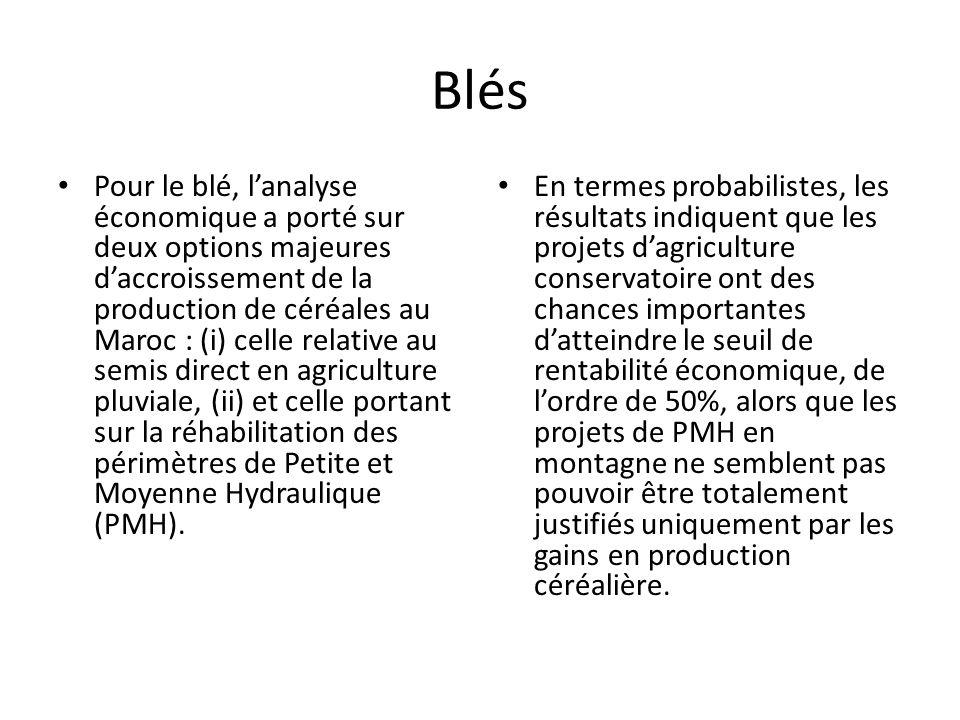 Blés Pour le blé, l'analyse économique a porté sur deux options majeures d'accroissement de la production de céréales au Maroc : (i) celle relative au semis direct en agriculture pluviale, (ii) et celle portant sur la réhabilitation des périmètres de Petite et Moyenne Hydraulique (PMH).