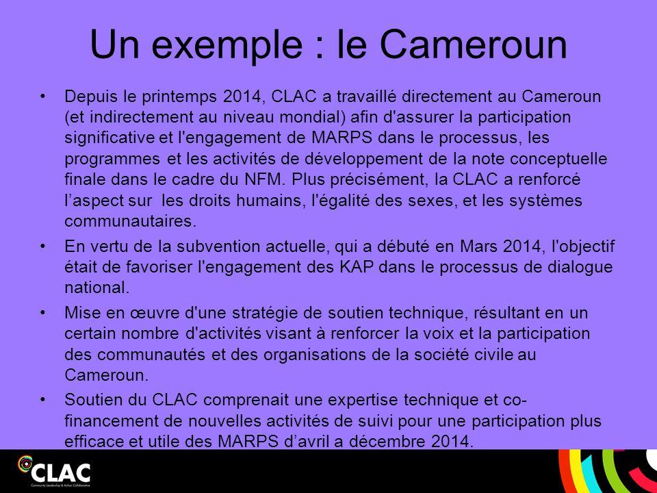 Un exemple : le Cameroun Depuis le printemps 2014, CLAC a travaillé directement au Cameroun (et indirectement au niveau mondial) afin d'assurer la par