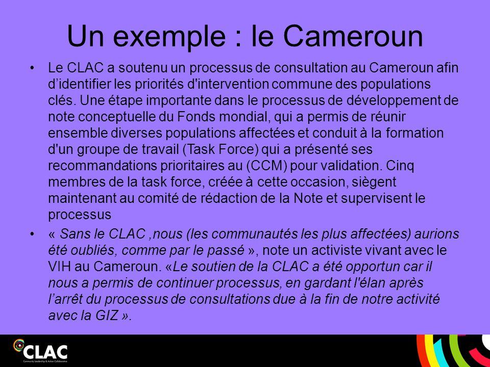 Un exemple : le Cameroun Le CLAC a soutenu un processus de consultation au Cameroun afin d'identifier les priorités d'intervention commune des populat