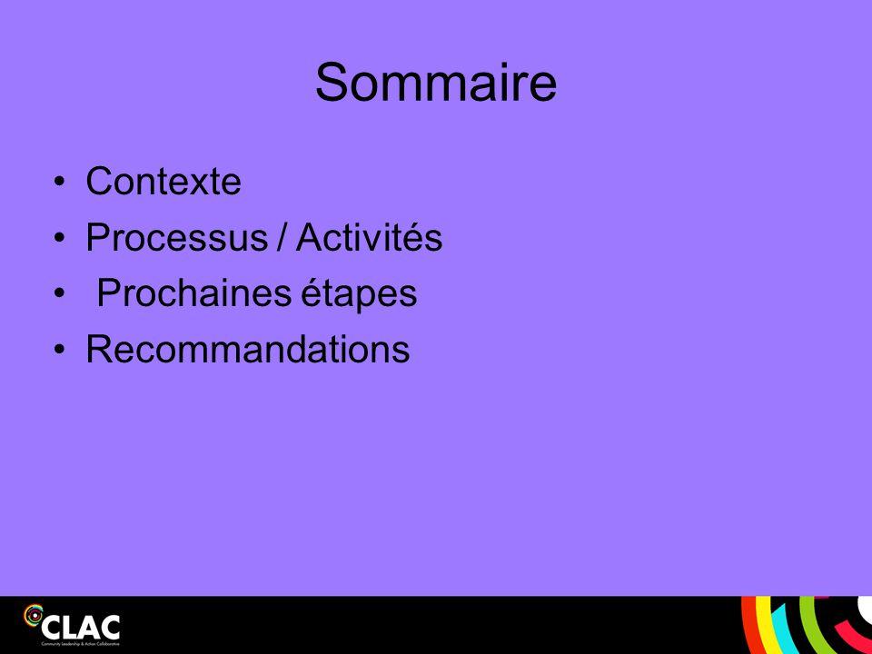 Sommaire Contexte Processus / Activités Prochaines étapes Recommandations