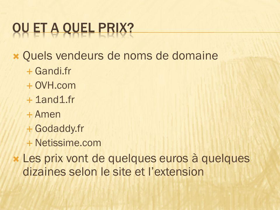  Quels vendeurs de noms de domaine  Gandi.fr  OVH.com  1and1.fr  Amen  Godaddy.fr  Netissime.com  Les prix vont de quelques euros à quelques dizaines selon le site et l'extension