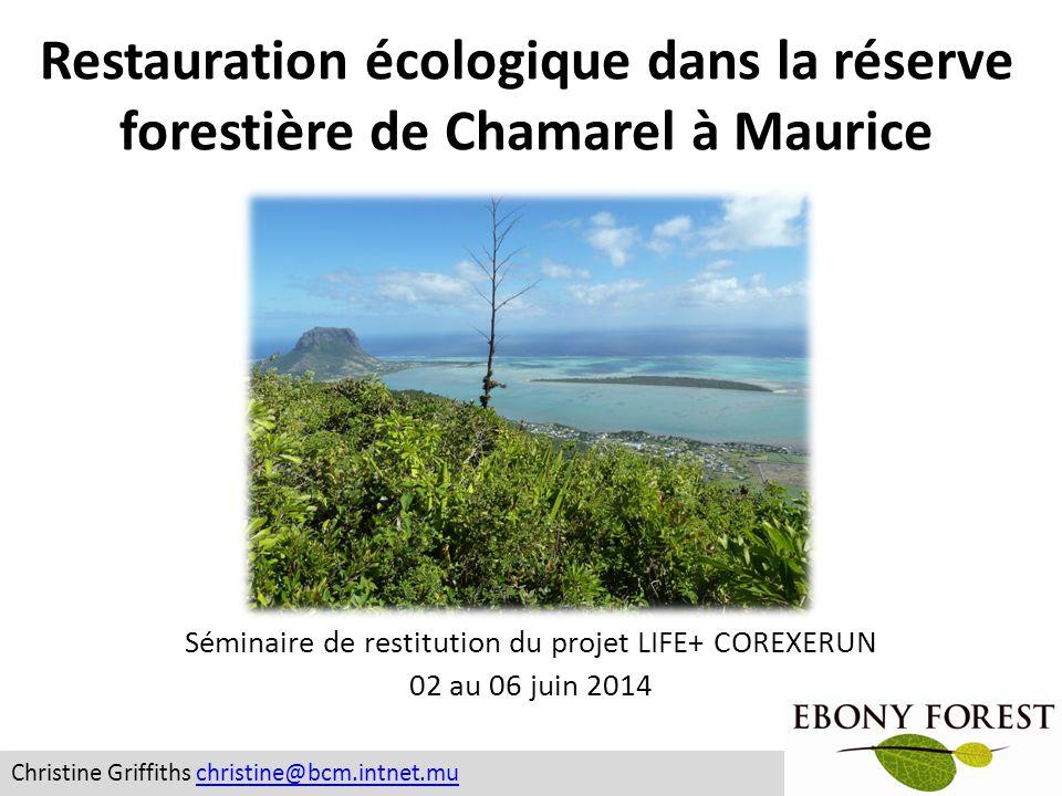 Forêt de Groupe Bioculture Vallée De L'Est 78 hectares 19 hectares Beanka: 14,000 hectares Sahafina: 2,500 hectares 38 hectares RodriguesMauriceMadagascar