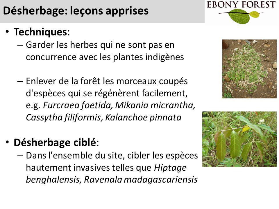 Désherbage: leçons apprises Techniques: – Garder les herbes qui ne sont pas en concurrence avec les plantes indigènes – Enlever de la forêt les morcea