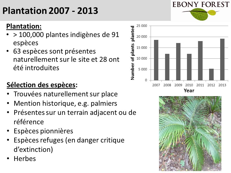 Plantation 2007 - 2013 Plantation: > 100,000 plantes indigènes de 91 espèces 63 espèces sont présentes naturellement sur le site et 28 ont été introdu