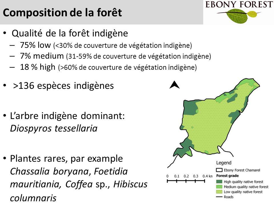 Composition de la forêt >136 espèces indigènes L'arbre indigène dominant: Diospyros tessellaria Plantes rares, par example Chassalia boryana, Foetidia