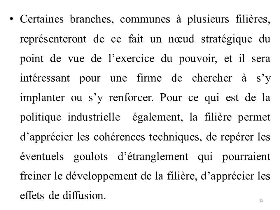 Certaines branches, communes à plusieurs filières, représenteront de ce fait un nœud stratégique du point de vue de l'exercice du pouvoir, et il sera