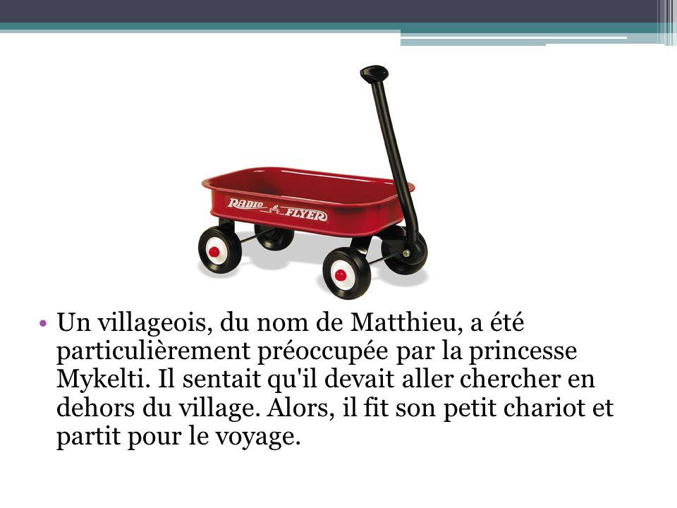 Un villageois, du nom de Matthieu, a été particulièrement préoccupée par la princesse Mykelti. Il sentait qu'il devait aller chercher en dehors du vil