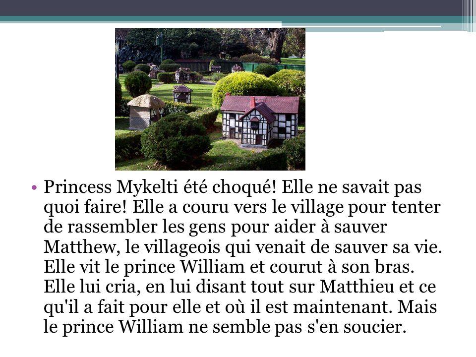 Princess Mykelti été choqué! Elle ne savait pas quoi faire! Elle a couru vers le village pour tenter de rassembler les gens pour aider à sauver Matthe
