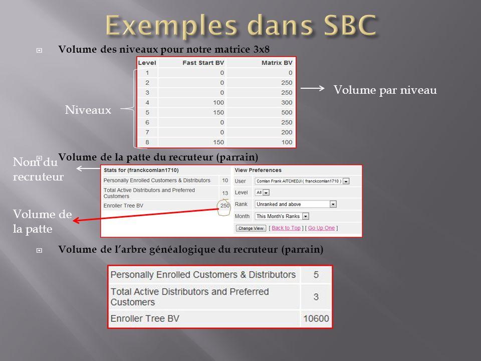  Volume des niveaux pour notre matrice 3x8  Volume de la patte du recruteur (parrain)  Volume de l'arbre généalogique du recruteur (parrain) Niveau