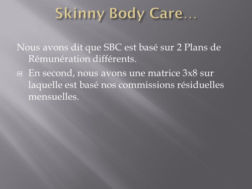 Nous avons dit que SBC est basé sur 2 Plans de Rémunération différents.  En second, nous avons une matrice 3x8 sur laquelle est basé nos commissions