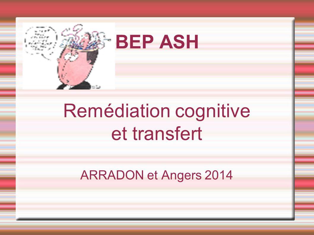 BEP ASH Remédiation cognitive et transfert ARRADON et Angers 2014