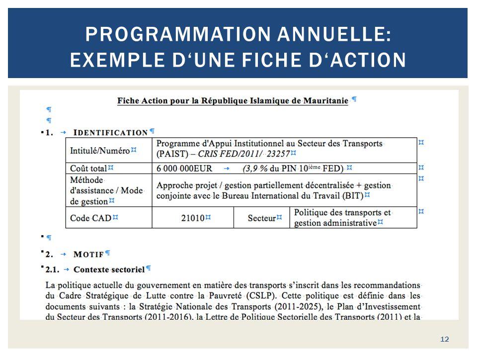 PROGRAMMATION ANNUELLE: EXEMPLE D'UNE FICHE D'ACTION 12