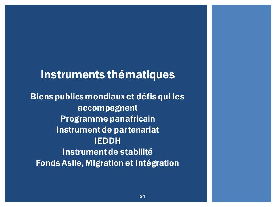 24 Instruments thématiques Biens publics mondiaux et défis qui les accompagnent Programme panafricain Instrument de partenariat IEDDH Instrument de st