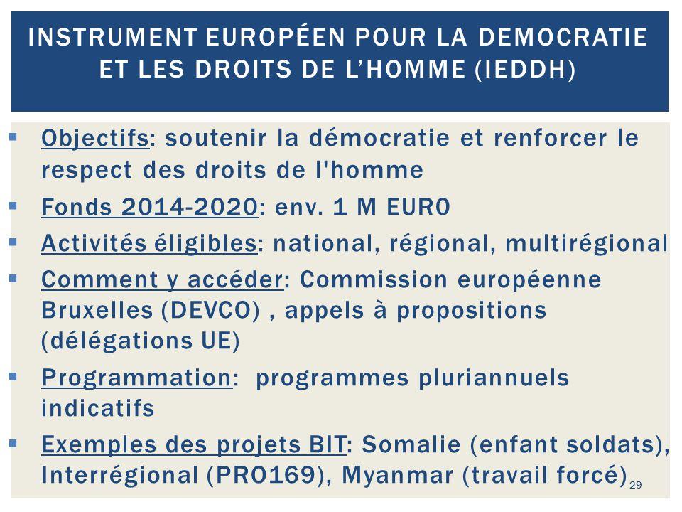29 INSTRUMENT EUROPÉEN POUR LA DEMOCRATIE ET LES DROITS DE L'HOMME (IEDDH)  Objectifs: soutenir la démocratie et renforcer le respect des droits de l