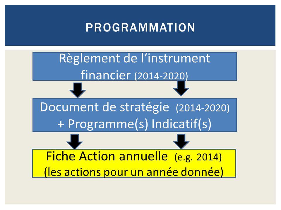 PROGRAMMATION Règlement de l'instrument financier (2014-2020) Document de stratégie (2014-2020) + Programme(s) Indicatif(s) Fiche Action annuelle (e.g