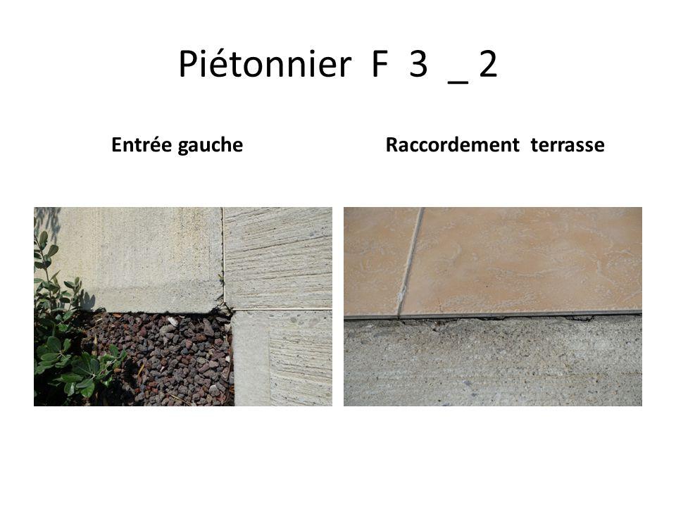 Piétonnier F 3 _ 2 Entrée gauche Raccordement terrasse