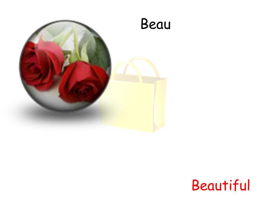 Beau Beautiful