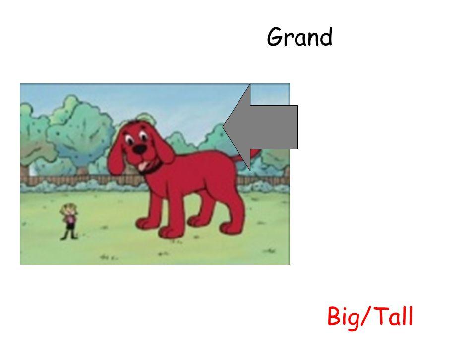 Grand Big/Tall