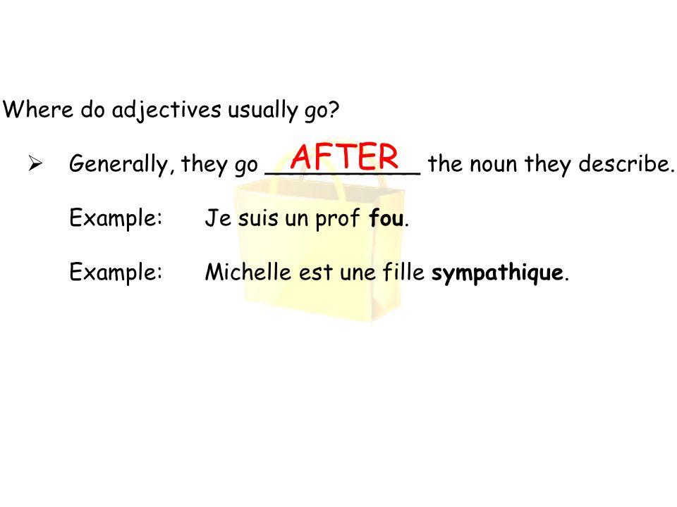 Where do adjectives usually go?  Generally, they go ___________ the noun they describe. Example: Je suis un prof fou. Example:Michelle est une fille