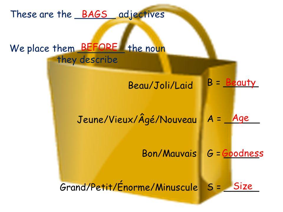 Beau/Joli/Laid Jeune/Vieux/Âgé/Nouveau Bon/Mauvais Grand/Petit/Énorme/Minuscule B = ______ A = ______ G = ______ S = ______ Beauty Age Goodness Size T