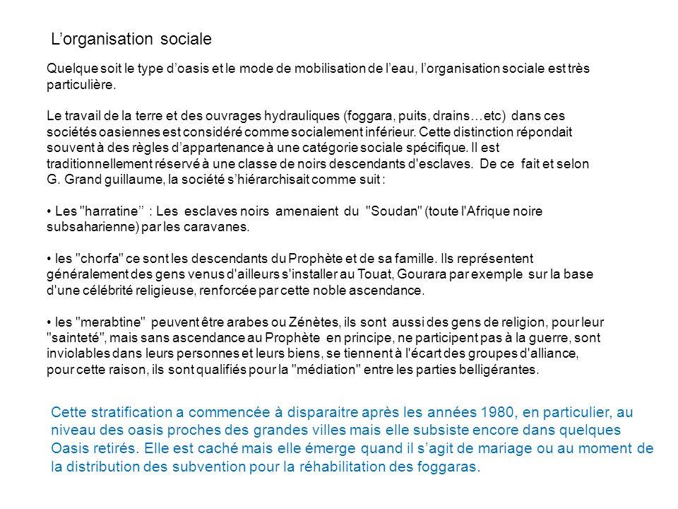 L'organisation sociale Quelque soit le type d'oasis et le mode de mobilisation de l'eau, l'organisation sociale est très particulière.