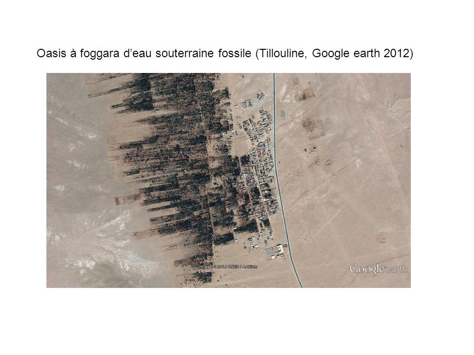 Oasis à foggara d'eau souterraine fossile (Tillouline, Google earth 2012)