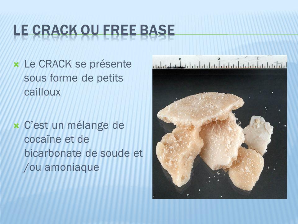  Le CRACK se présente sous forme de petits cailloux  C'est un mélange de cocaïne et de bicarbonate de soude et /ou amoniaque