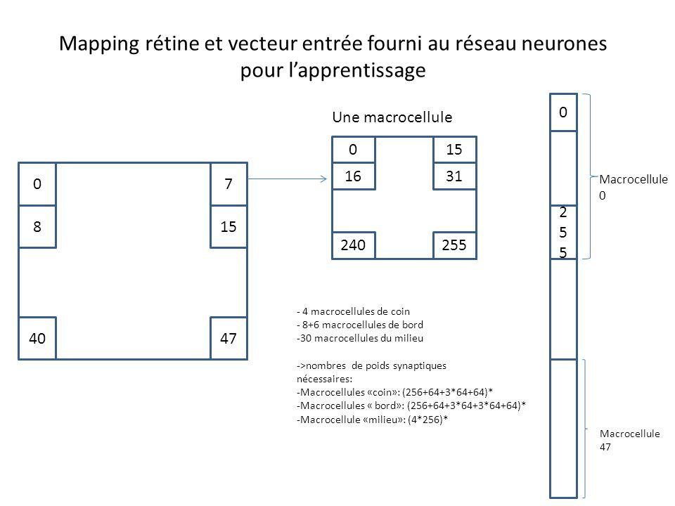 Mapping rétine et vecteur entrée fourni au réseau neurones pour l'apprentissage 07 158 4047 Une macrocellule 150 1631 255240 Macrocellule 0 0 255255 Macrocellule 47 - 4 macrocellules de coin - 8+6 macrocellules de bord -30 macrocellules du milieu ->nombres de poids synaptiques nécessaires: -Macrocellules «coin»: (256+64+3*64+64)* -Macrocellules « bord»: (256+64+3*64+3*64+64)* -Macrocellule «milieu»: (4*256)*