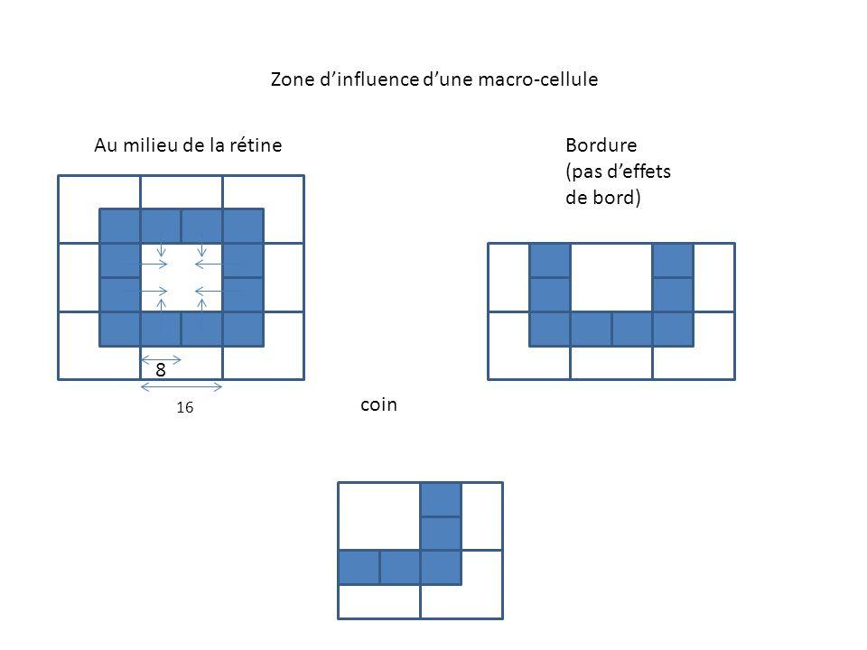 Zone d'influence d'une macro-cellule Au milieu de la rétineBordure (pas d'effets de bord) coin 16 8