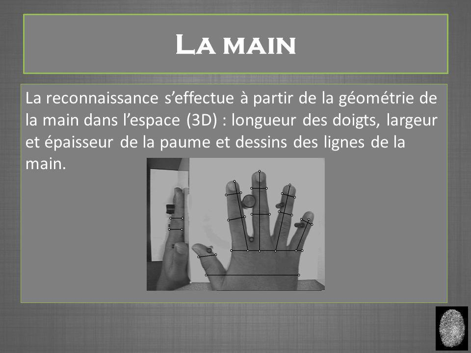 La main La reconnaissance s'effectue à partir de la géométrie de la main dans l'espace (3D) : longueur des doigts, largeur et épaisseur de la paume et dessins des lignes de la main.