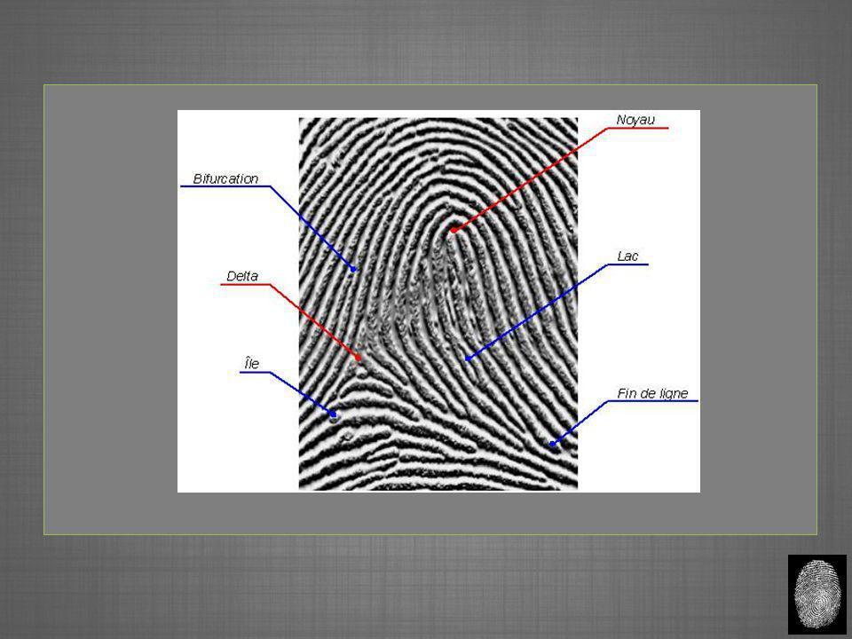 La technique optique AvantagesInconvénients Son ancienneté et sa mise à l'épreuve.