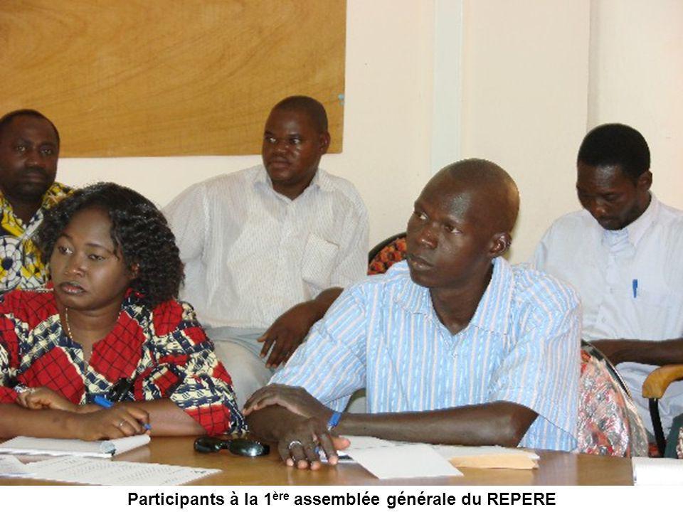Participants à la 1 ère assemblée générale du REPERE