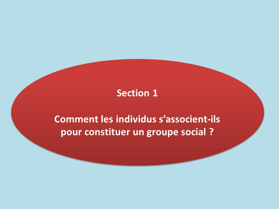 Section 1 Comment les individus s'associent-ils pour constituer un groupe social ? Section 1 Comment les individus s'associent-ils pour constituer un