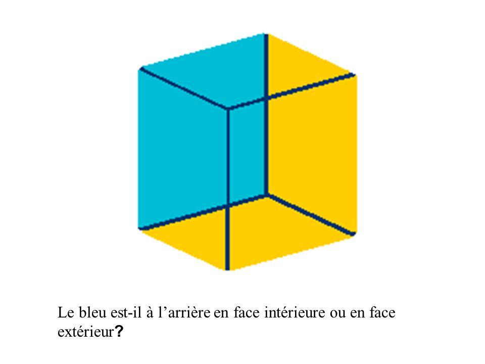 Le bleu est-il à l'arrière en face intérieure ou en face extérieur