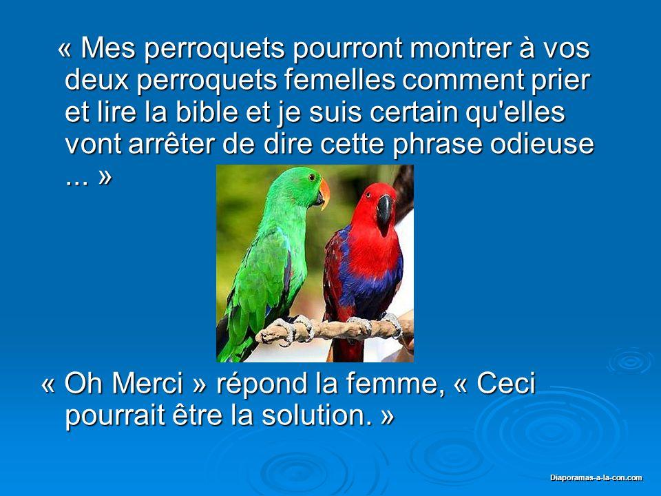 Diaporama PPS réalisé pour http://www.diaporamas-a-la-con.com Diaporamas-a-la-con.com « C est dégoutant » s écrie le Curé, puis il se met à penser....