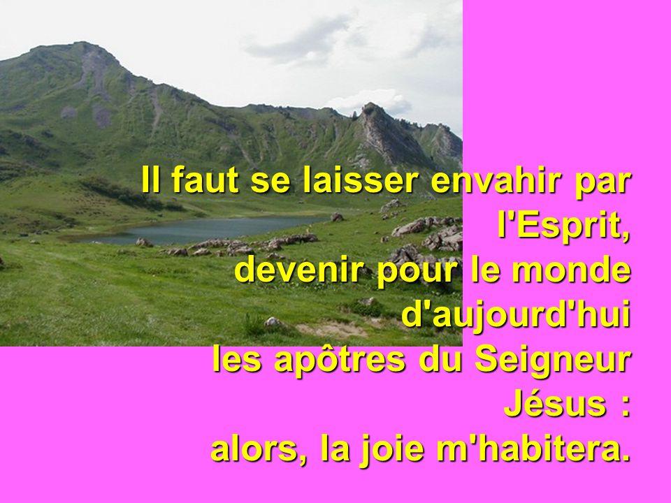 Il faut se laisser envahir par l'Esprit, devenir pour le monde d'aujourd'hui les apôtres du Seigneur Jésus : alors, la joie m'habitera.