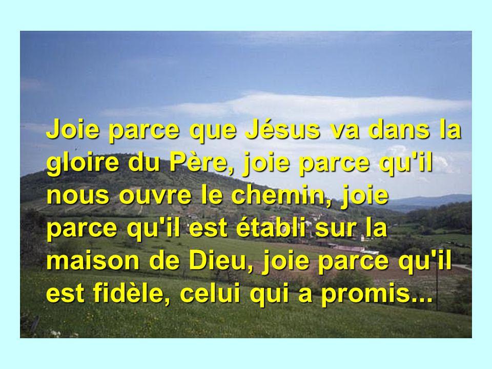 Joie parce que Jésus va dans la gloire du Père, joie parce qu'il nous ouvre le chemin, joie parce qu'il est établi sur la maison de Dieu, joie parce q