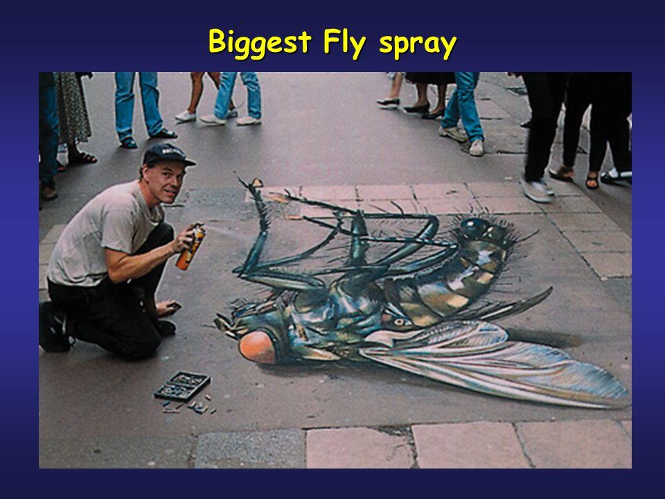Biggest Fly spray