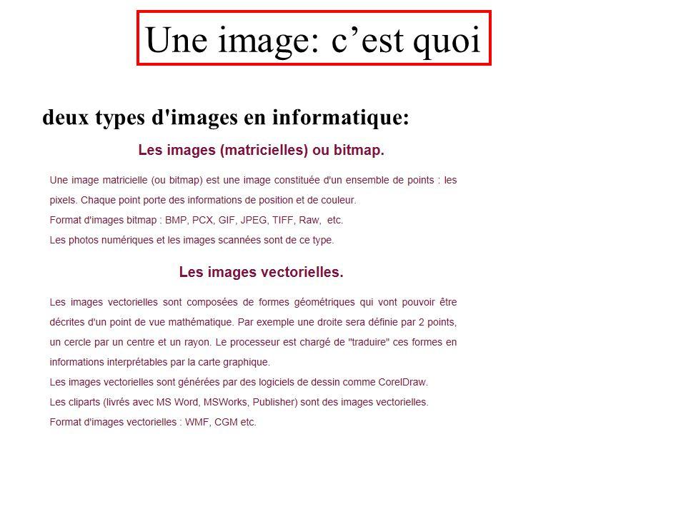 deux types d images en informatique: Une image: c'est quoi