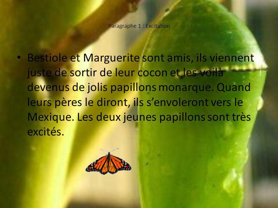 Paragraphe 1 : Excitation Bestiole et Marguerite sont amis, ils viennent juste de sortir de leur cocon et les voilà devenus de jolis papillons monarque.