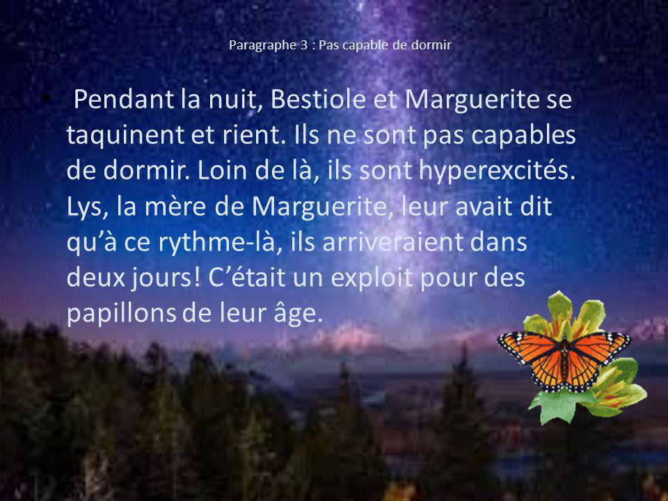 Paragraphe 3 : Pas capable de dormir Pendant la nuit, Bestiole et Marguerite se taquinent et rient.