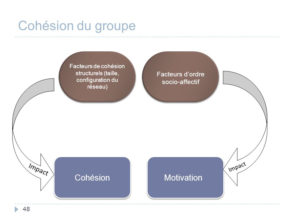 48 Cohésion du groupe Cohésion Facteurs de cohésion structurels (taille, configuration du réseau) Impact Motivation Facteurs d'ordre socio-affectif Im