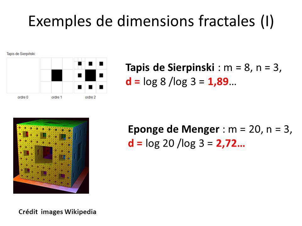 Exemples de dimensions fractales (I) Tapis de Sierpinski : m = 8, n = 3, d = log 8 /log 3 = 1,89… Crédit images Wikipedia Eponge de Menger : m = 20, n