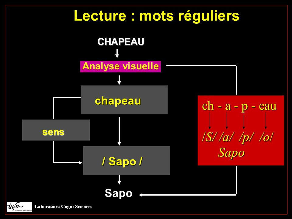 Lecture : mots réguliers CHAPEAU sens sens chapeau / Sapo / Analyse visuelle Sapo ch - a - p - eau /S/ /a/ /p/ /o/ Sapo Sapo Laboratoire Cogni-Sciences