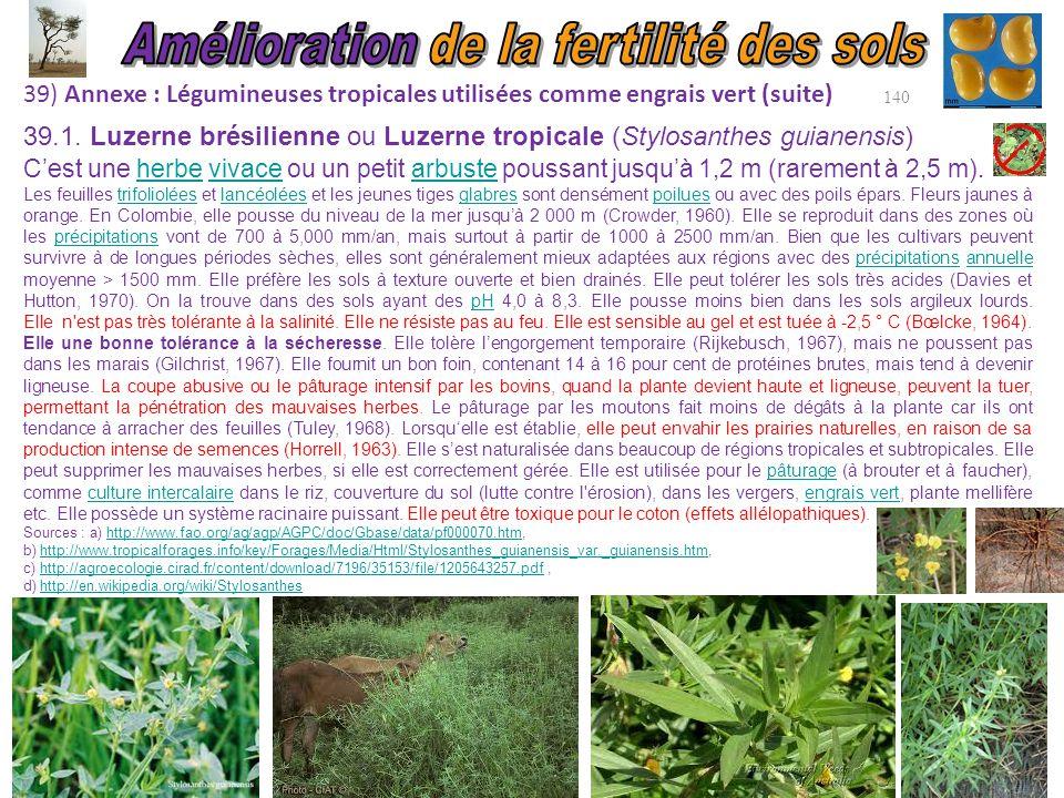 39) Annexe : Légumineuses tropicales utilisées comme engrais vert (suite) 140 C'est une herbe vivace ou un petit arbuste poussant jusqu'à 1,2 m (rarem