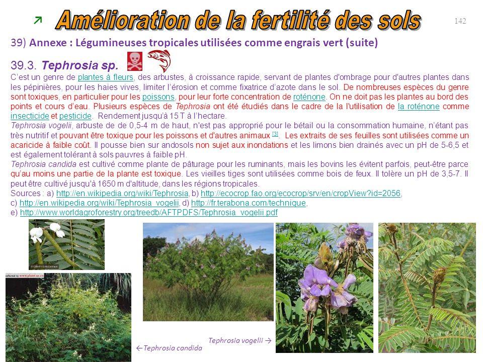 39) Annexe : Légumineuses tropicales utilisées comme engrais vert (suite) 142 ←Tephrosia candida Tephrosia vogelii → 39.3. Tephrosia sp. C'est un genr