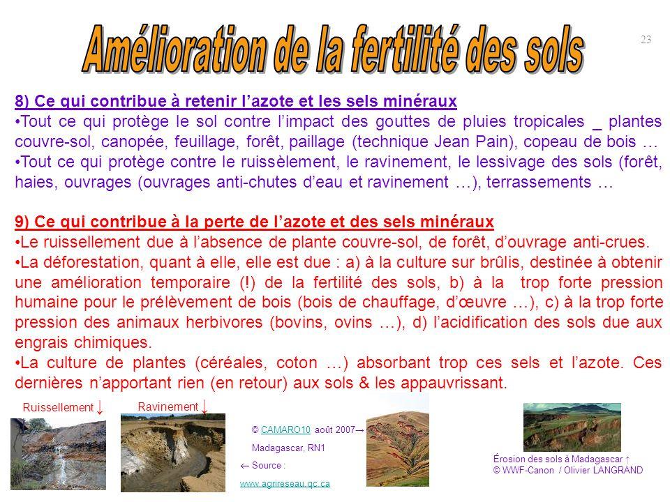 8) Ce qui contribue à retenir l'azote et les sels minéraux Tout ce qui protège le sol contre l'impact des gouttes de pluies tropicales _ plantes couvr
