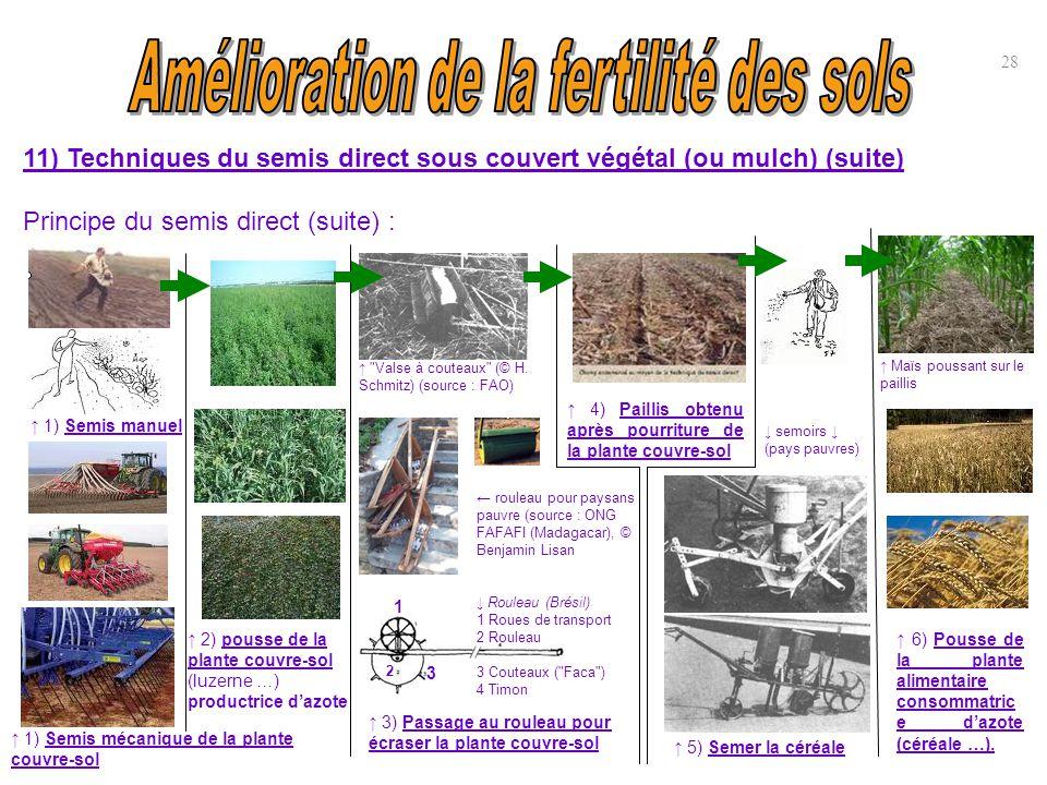 11) Techniques du semis direct sous couvert végétal (ou mulch) (suite) Principe du semis direct (suite) : 28 ↑ 1) Semis manuel ↑ 1) Semis mécanique de