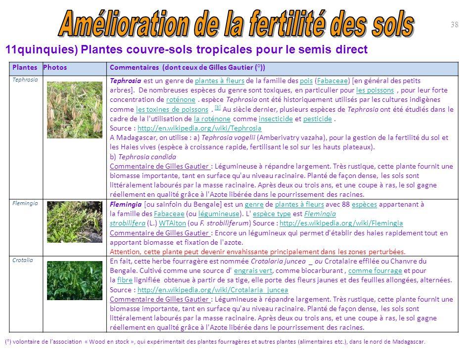 38 PlantesPhotosCommentaires (dont ceux de Gilles Gautier (°)) Tephrosia Tephrosia est un genre de plantes à fleurs de la famille des pois (Fabaceae)