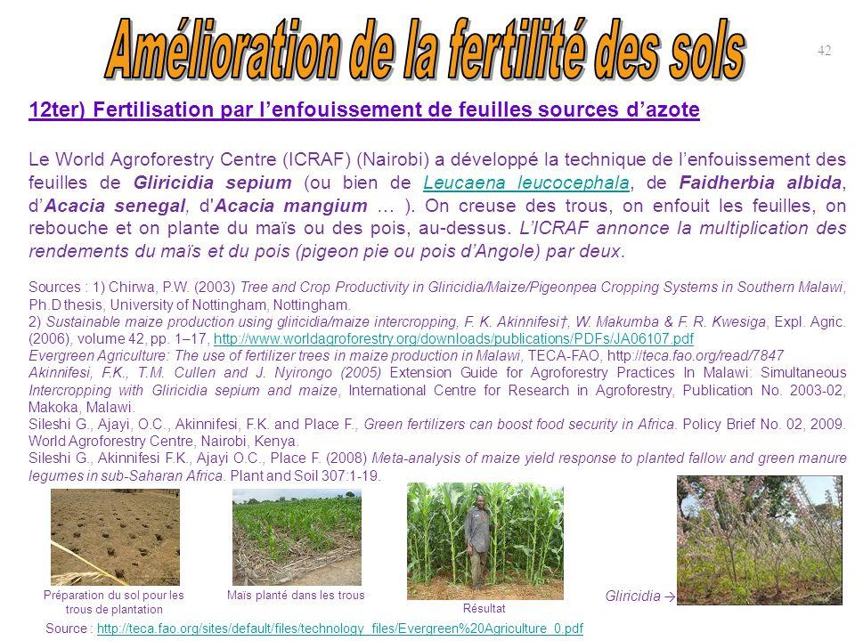 12ter) Fertilisation par l'enfouissement de feuilles sources d'azote Le World Agroforestry Centre (ICRAF) (Nairobi) a développé la technique de l'enfo